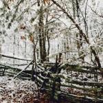 winter-pic-150x150